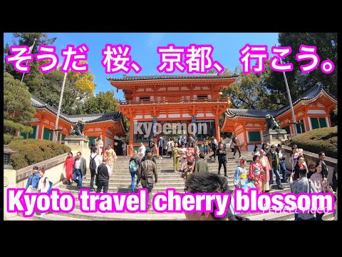 Kyoto TravelGuide MaruyamaPark①YasakaShrine KiyomizuTemple