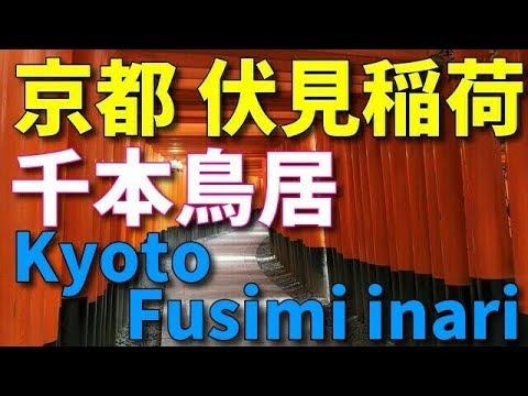 京都伏見稲荷 千本鳥居 Kyoto Fusimiinari Senbon Torii  京都旅行 Kyoto tour