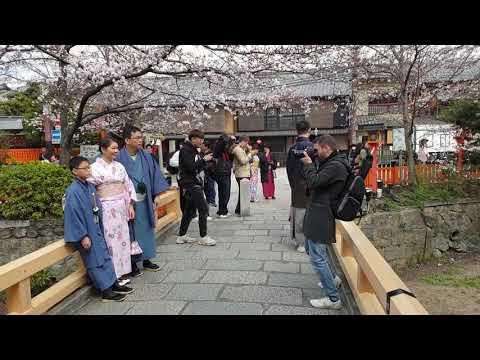 Bike tour  Stop. Gion district, Kyoto.