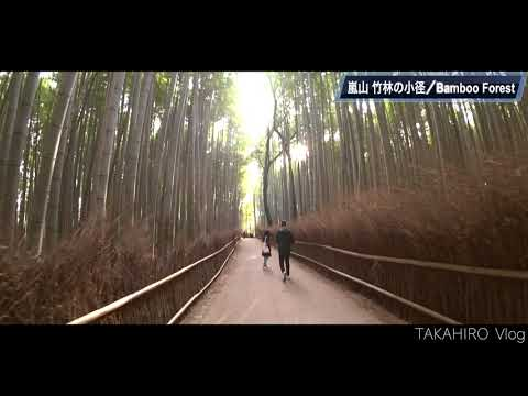 【Vlog】Arashiyama Bamboo Forest in Kyoto,Japan 【嵐山 竹林の小径・京都】【Solo Travel 】【Kyoto Sightseeing】