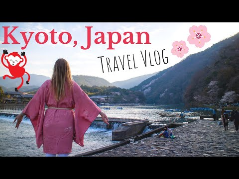 Kyoto Japan Travel Vlog – Monkey Hill, Bamboo Forest, Temples, and More [The Ski Week Japan]