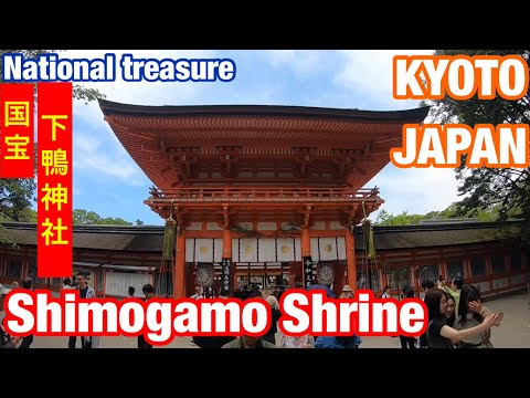 Kyoto  Japan Shimogamo Shrine Walk Travel 京都 国宝 下鴨神社 散歩 旅行