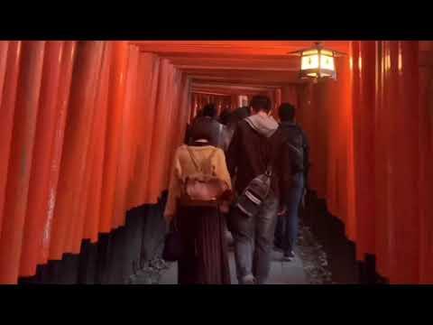Kyoto Osaka tour 2019