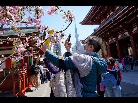 Japan 2019 –  A short travel film from Hungary (Tokyo, Mount Fuji, Kyoto, Nara, Osaka, Hiroshima)