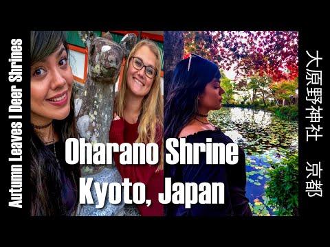 Kyoto Travel Guide | Ōharano Shrine 大原野神社 | Unknown Japan