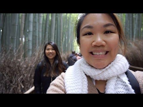 HungryDeb Travels – DAY in KYOTO & KOBE, JAPAN! Arashiyama, Kinkakuji, Kobe Beef & MORE!