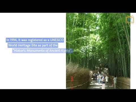 """Review:  """"Tenryu-Ji Shrine's Bamboo trail"""" in Kyoto"""