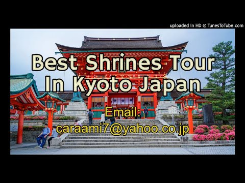 Best Shrines Tour In Kyoto Japan
