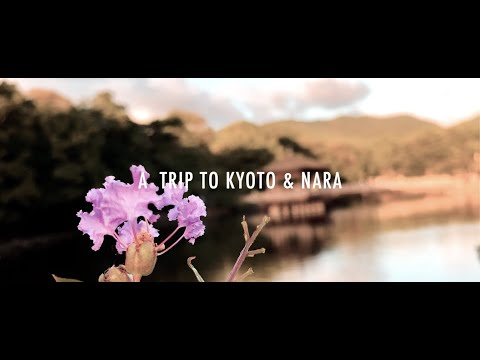 iPhoneXS Cinematic Travel Video – A short trip to Kyoto & Nara