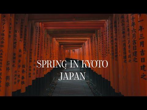 Kyoto In Spring, Japan | Slow Travel