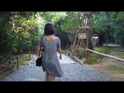 Kyoto end summer walking tour (ft. the Halal Quartet)
