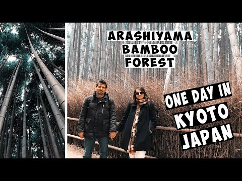 ONE DAY IN KYOTO I ARASHIYAMA BAMBOO FOREST I  KINKAKUJI THE GOLDEN TEMPLE I NISHIKYOKU KYOTOSHI