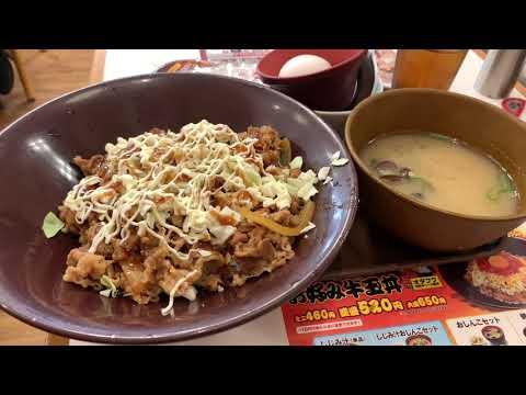 Osaka & Kyoto Easy Vlog | Solo Travel
