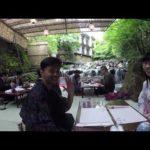 Japan 2016 Travel Video – Tokyo, Kyoto, Osaka, Nara, Hakone