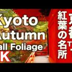 4K Kyoto Japan 京都の紅葉名所TOP12 Autumn Leaves 京都観光 Fall Foliage  Kyoto Sightseeing Guide 嵐山 清水寺 永観堂
