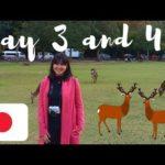 TRAVEL VLOG: Kyoto and Nara Tour! | Franchesca Jurado (Philippines)