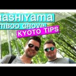 Arashiyama Bamboo Grove Kyoto Japan [ Kyoto in one day or Kyoto in 3 days ] ]