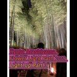 Kyoto Arashiyama Flower Light Path 2019 Light Up Part 3 京都嵐山花灯路2019 ライトアップ パート3
