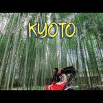 Kyoto Rickshaw Experience/Arashiyama Bamboo Grove/Temples/Katsura River