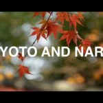 Travel Vlog // Kyoto and Nara