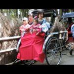 Tour of the Famous Bamboo Grove at Arashiyama near Kyoto
